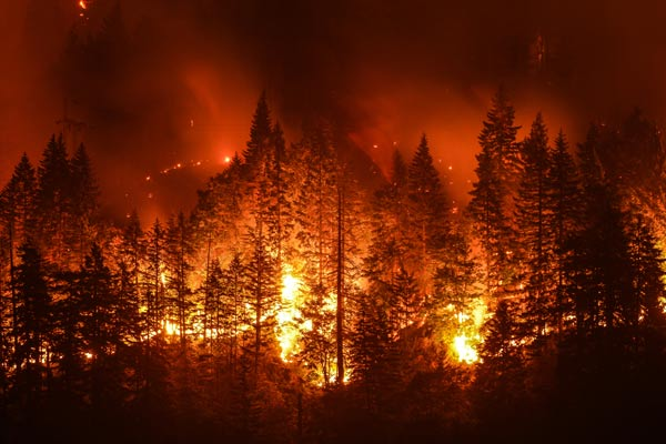 Mass notification system for wildfire communications